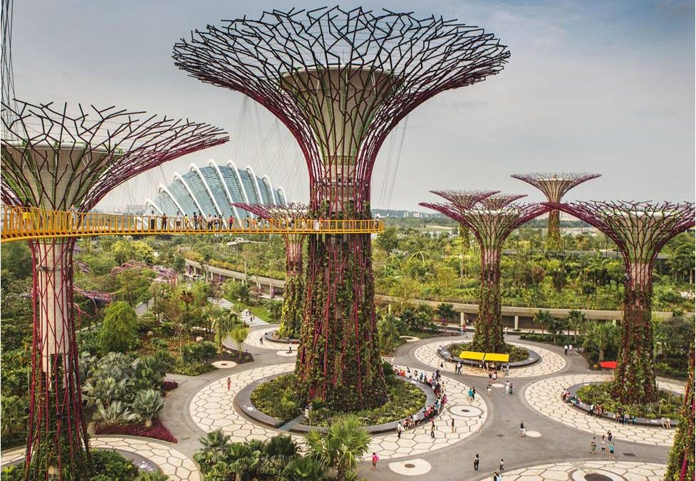 Nature for cities or cities for nature?